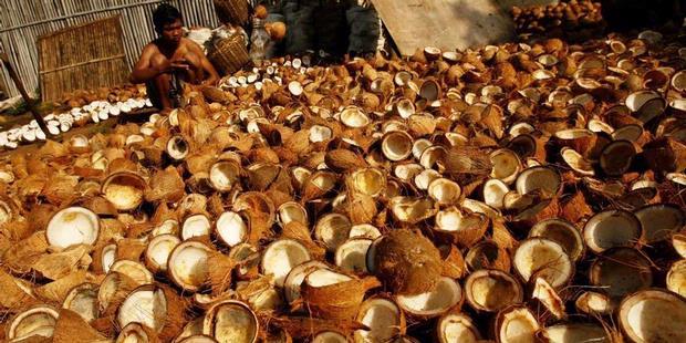 Manfaat minyak kelapa untuk diet sehat