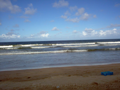 Mayaro Beach