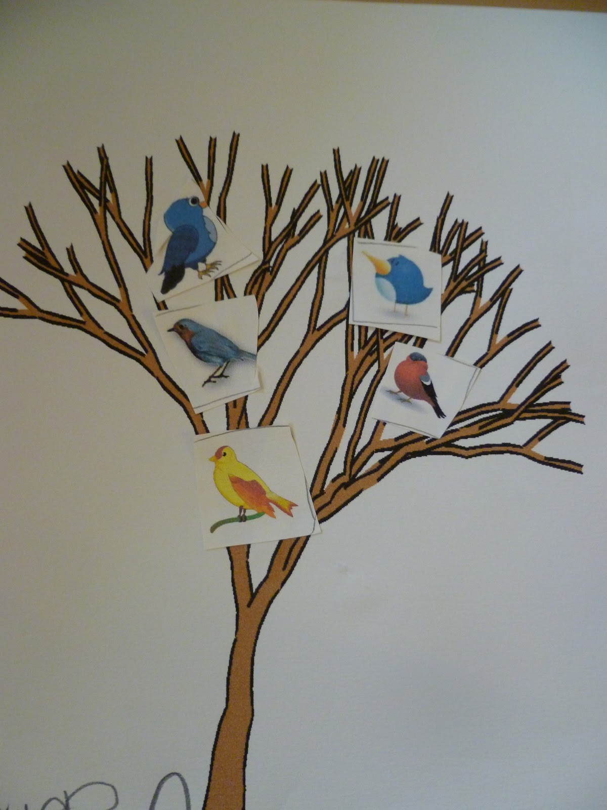 Letter Of The Week B Learning About Birds Art Science More