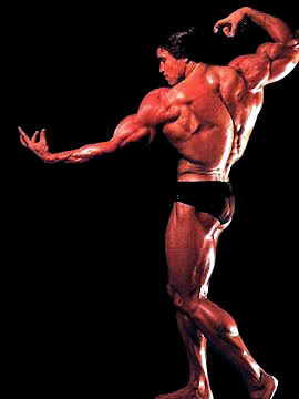 Cute Pictures Sports Arnold Schwarzenegger Bodybuilding