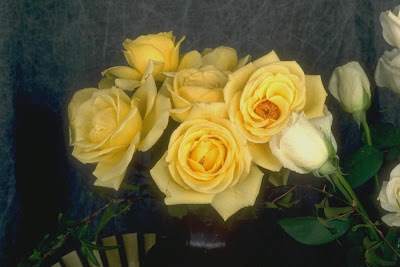 Cute And Happy Wallpapers Yellow Roses Wallpapers Free Download