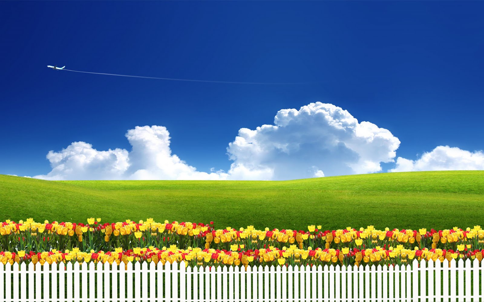 Cute New Wallpaper Download Pleasant Green Amp Sky Background Wallpapers