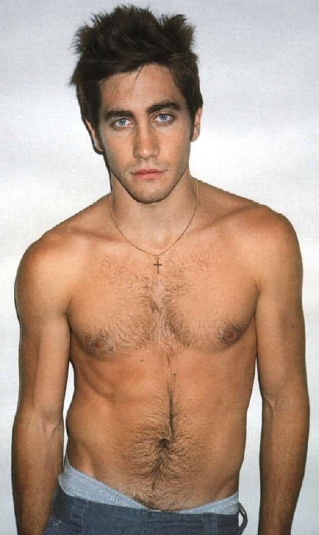 jake gyllenhaal gay char