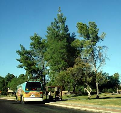 Outpost Mâvarin: Round Robin: A Tucson Ramble