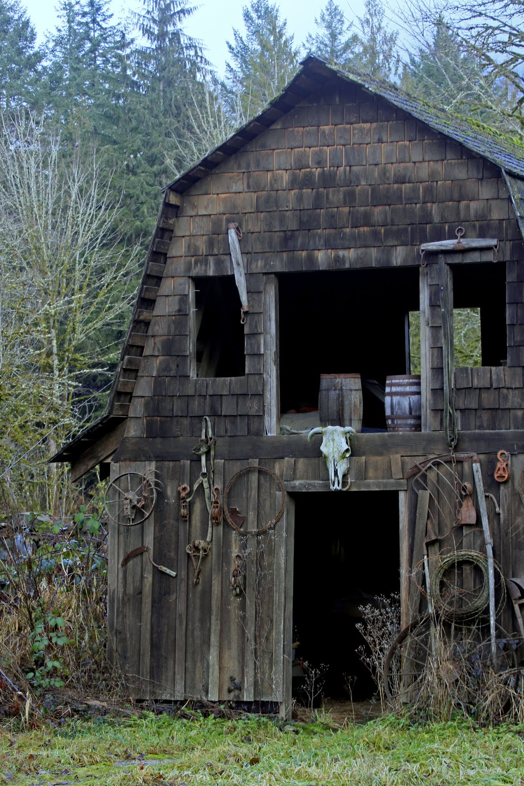 Barns: Serendipity And Orchids: Derelict Machinery