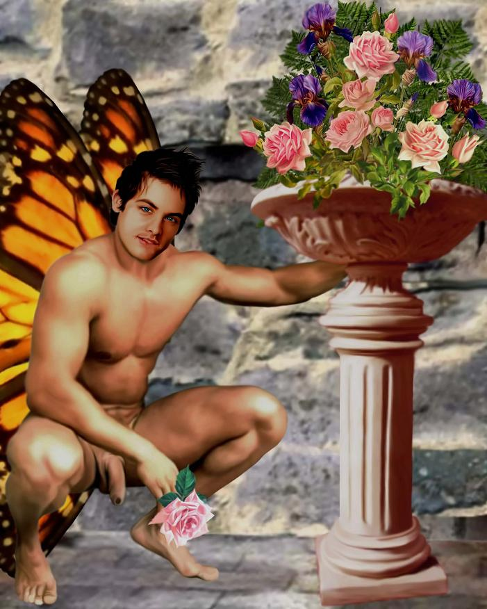 gay fairies erotica