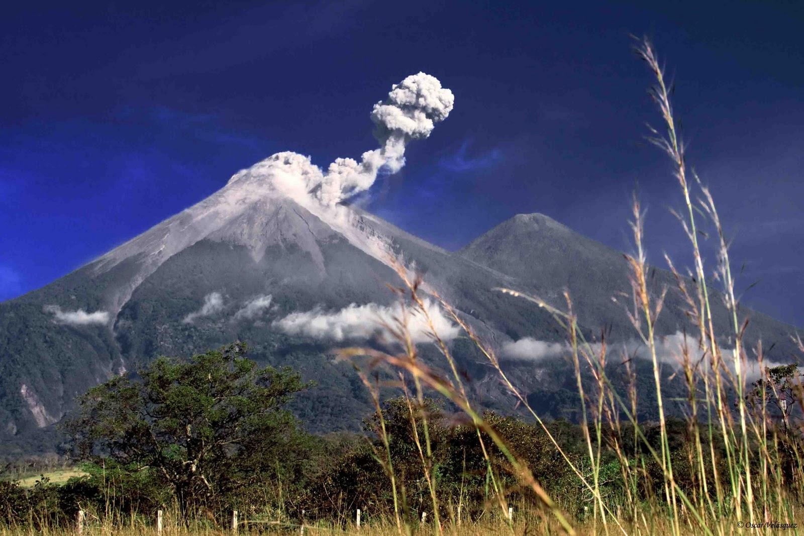 Guatemalan Coffee: GUATEMALAN COFFEE REGIONS PROFILE NO. 1 ...