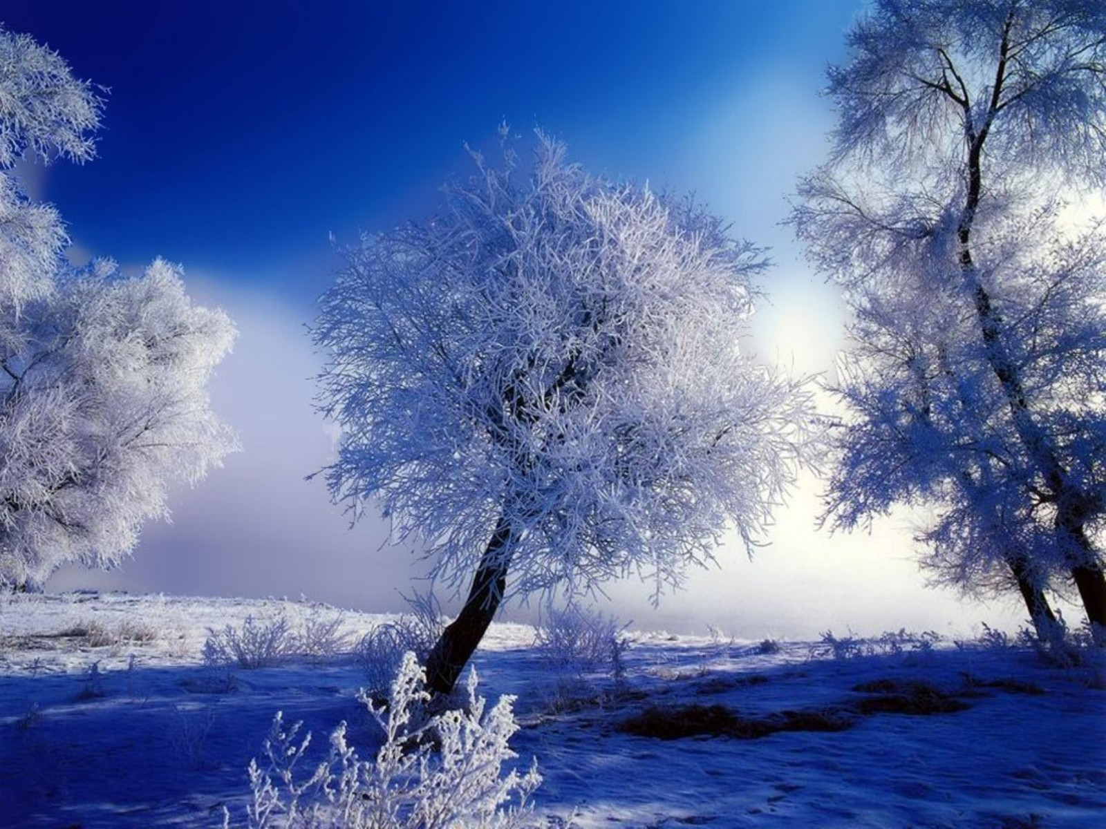 snow scenery full hd - photo #30