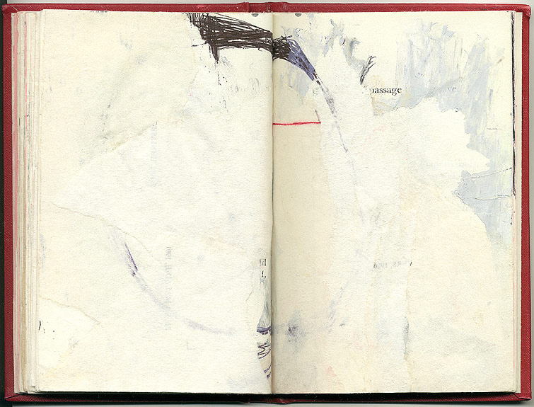 passage, And Other Observations, 2007. pen, acrylic & collage on altered book.