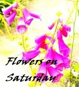 FLOWERS ON SATURDAY PHOTO CHALLENGE