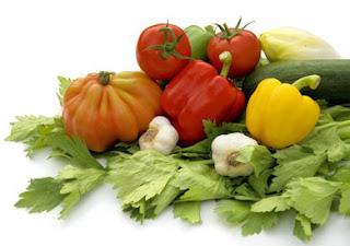 Microorganismos en alimentos no todos son iguales
