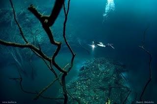 Sungai di Bawah Laut 1