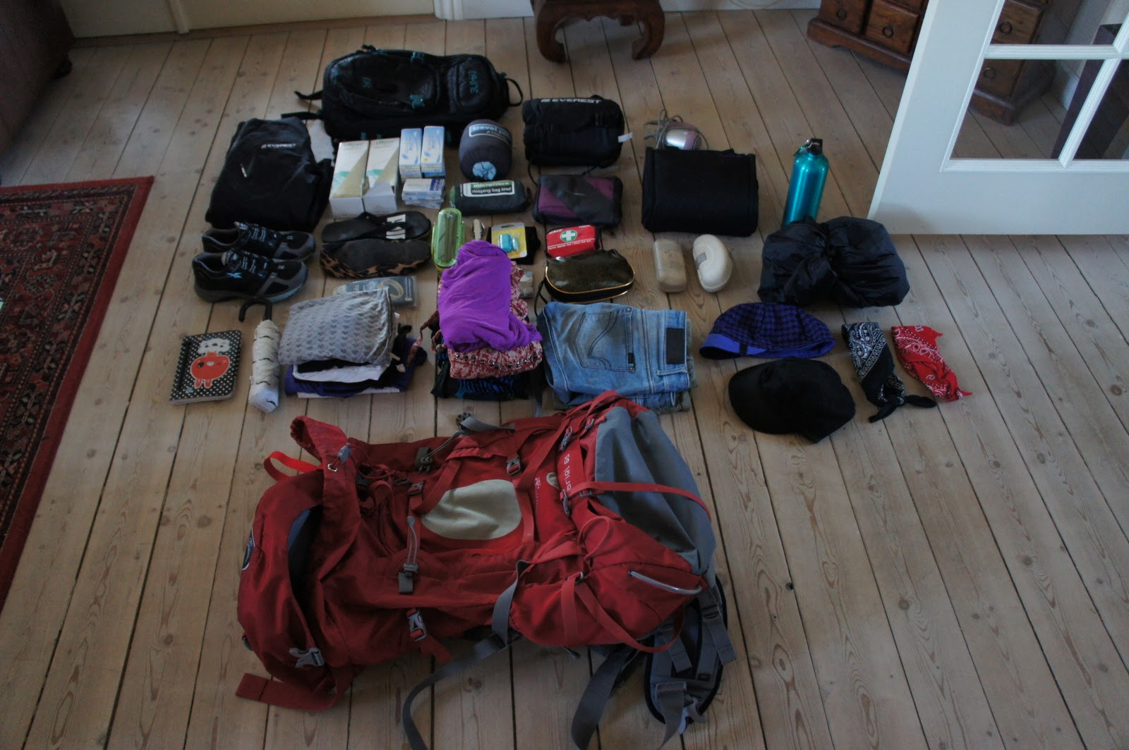 Round The World Trip January 2011
