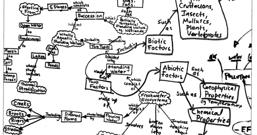 8.1 & 8.2 Math and Science: Systems of Body Concept Maps