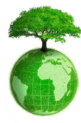 What Does Ats Mean >> Dunia Baru: Bercucuk Tanam Kecil2an - Kempen Bumi Hijau