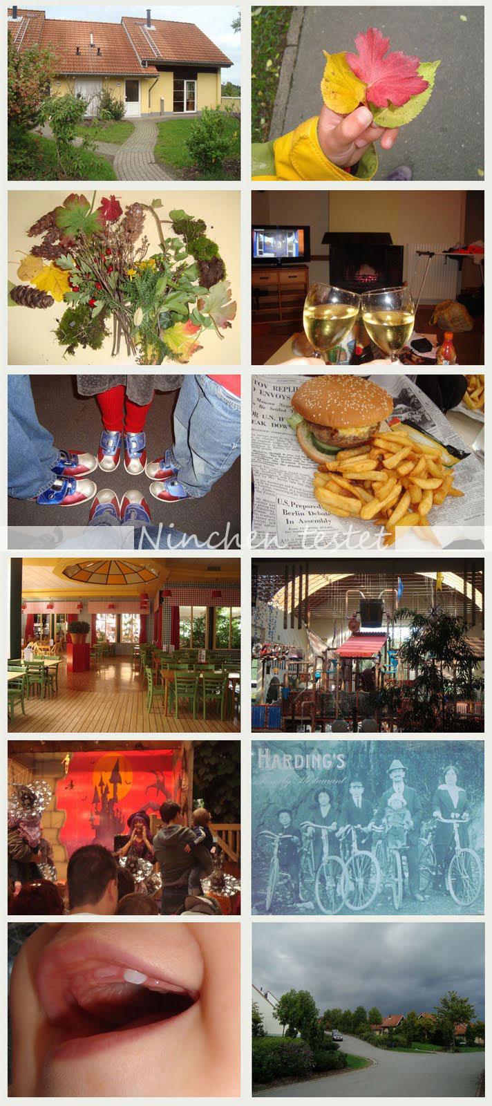 Indigo Autumn 34 Center Parcs Hochsauerland Impressionen