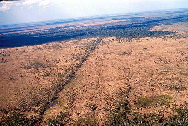 Canais para agricultura, Baures, Bolivia