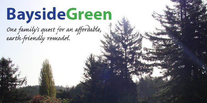 Bayside Green - Affordable, Earth-Friendly Remodel