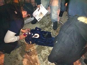 Bears fans burning Jay Cutler's jersey