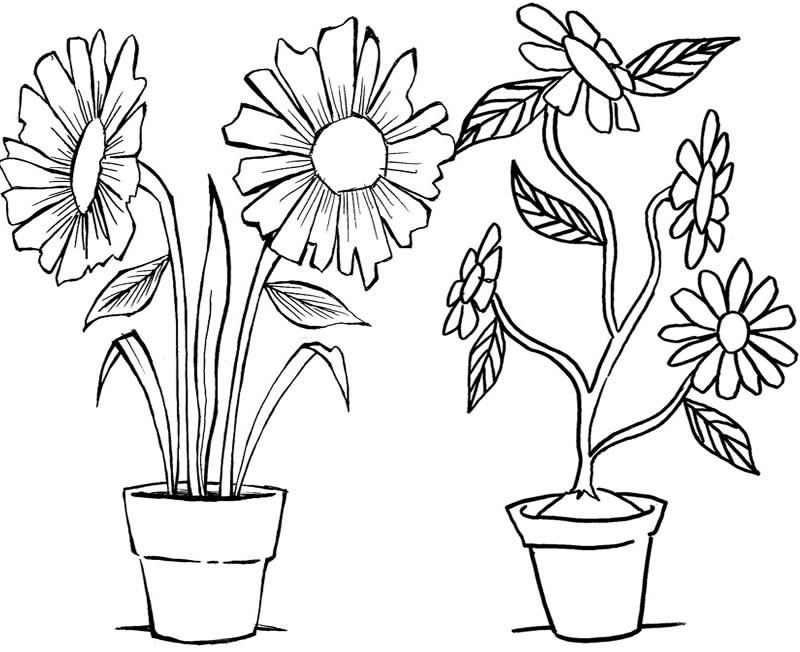 Desenhos De Flores Para Bordar