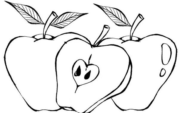 Risco De Fruta Desenhos Diversos Para Colorir Desenho De Fruta