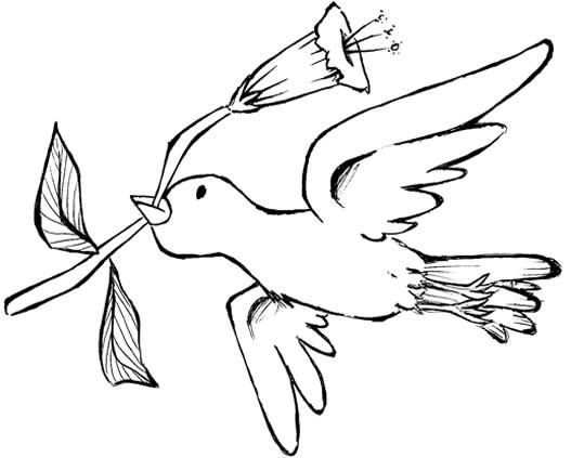 Desenho De Passaro Para Colorir Animais Da Natureza Desenhos