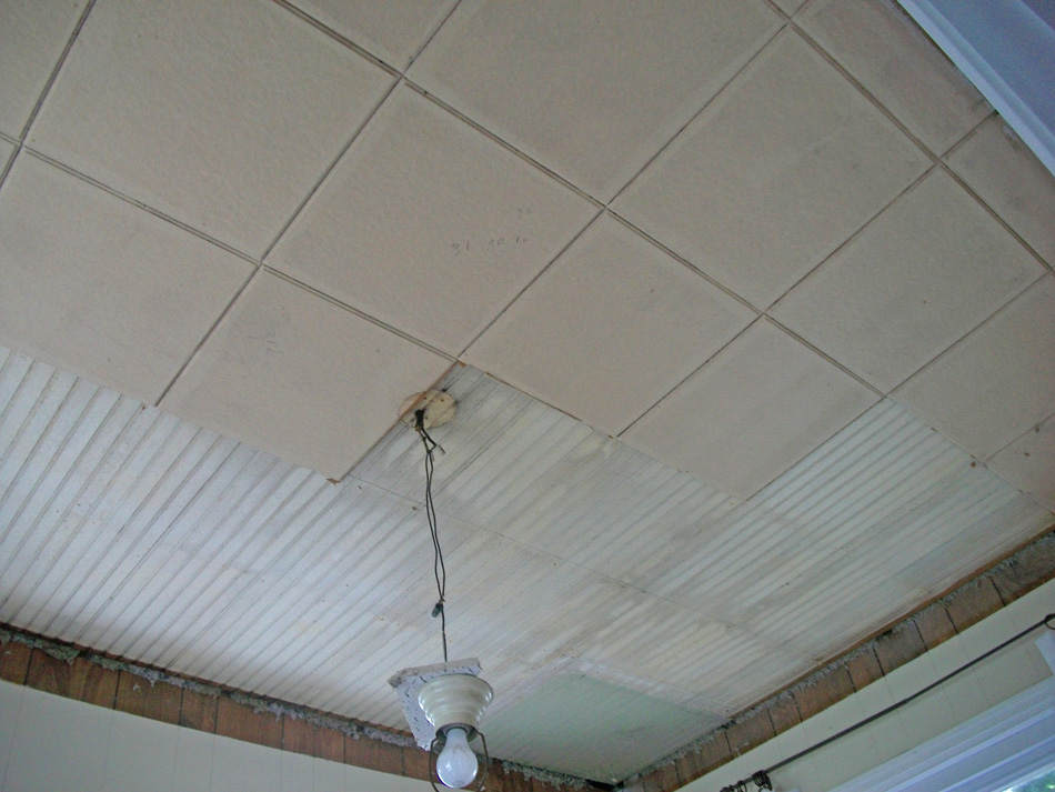 Emma Watson Acoustical Ceiling Tiles
