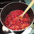 Andy's famous spiced cranberry sauce