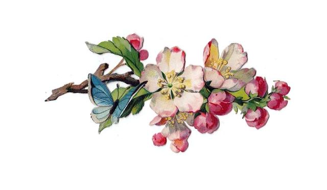 http://2.bp.blogspot.com/_JQFg2GYRO_Q/TUh-8m8aeyI/AAAAAAAACSc/YKz5HJFfvi8/s1600/penny_plain_victorian_scraps_flowers_0019.png