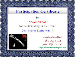 Partcipation Certificate from Akila