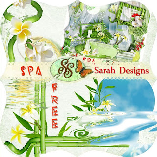 http://2.bp.blogspot.com/_JTei5U8eP9k/Sk_yJvRy0mI/AAAAAAAAANE/B7SqnSKID9c/s320/Sarah+Designs+SPA+FREE.jpg