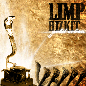 Several reasons on why limp bizkit is not a heavy metal band