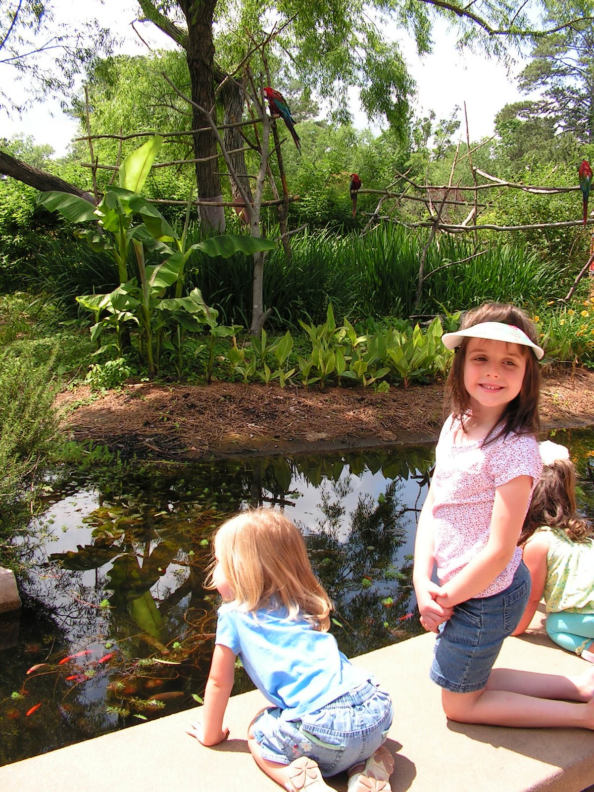 Growing with my Girls: A Trip to the Birmingham Zoo