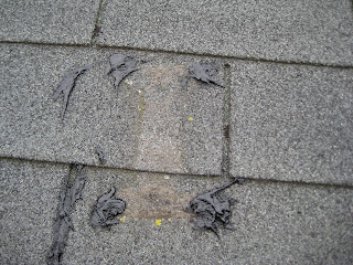 In Most Cases The Bolts Used To Secure Dish Your House Will Have Punctured Several Layers Under Roofing Leaving Them Exposed Likely Cause
