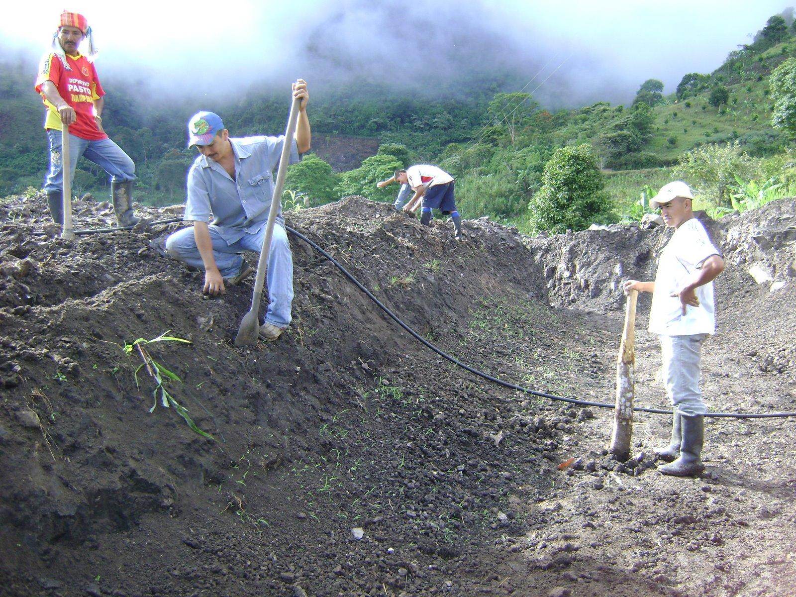 Dise o de instalaciones piscicolas acuicultura en colombia for Fertilizacion de estanques piscicolas