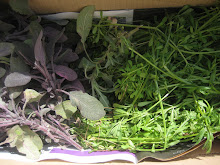 Sage n Cleavers harvest