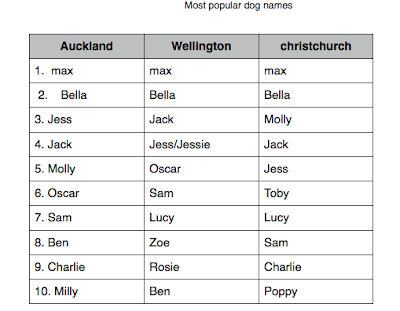 1 Girl Dog Names That Start With A P Girl Dog With A Names P That Start