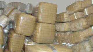 Hispanic News Network U S A : 1,800 Pounds Of Marijuana Seized In