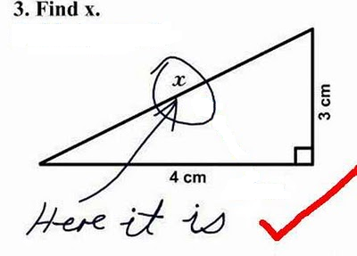A blonde searches x. Rectangular triangle, theorem of Pythagoras. Mathematics for blondes. Humour about blondes picture. A photo is a blonde