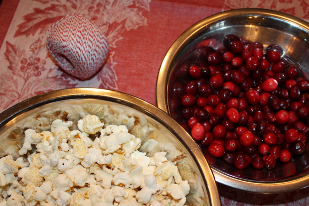 Sweet And Simple Cranberry Popcorn Garland