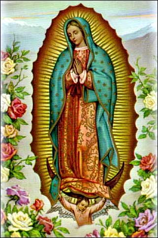 Image result for our lady of guadalupe image