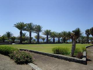 Пальмы возле бунгало Dona Rosa