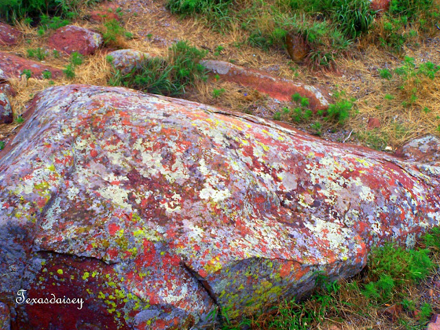 Large Rock at Mt Scott in Lawton, Ok Area