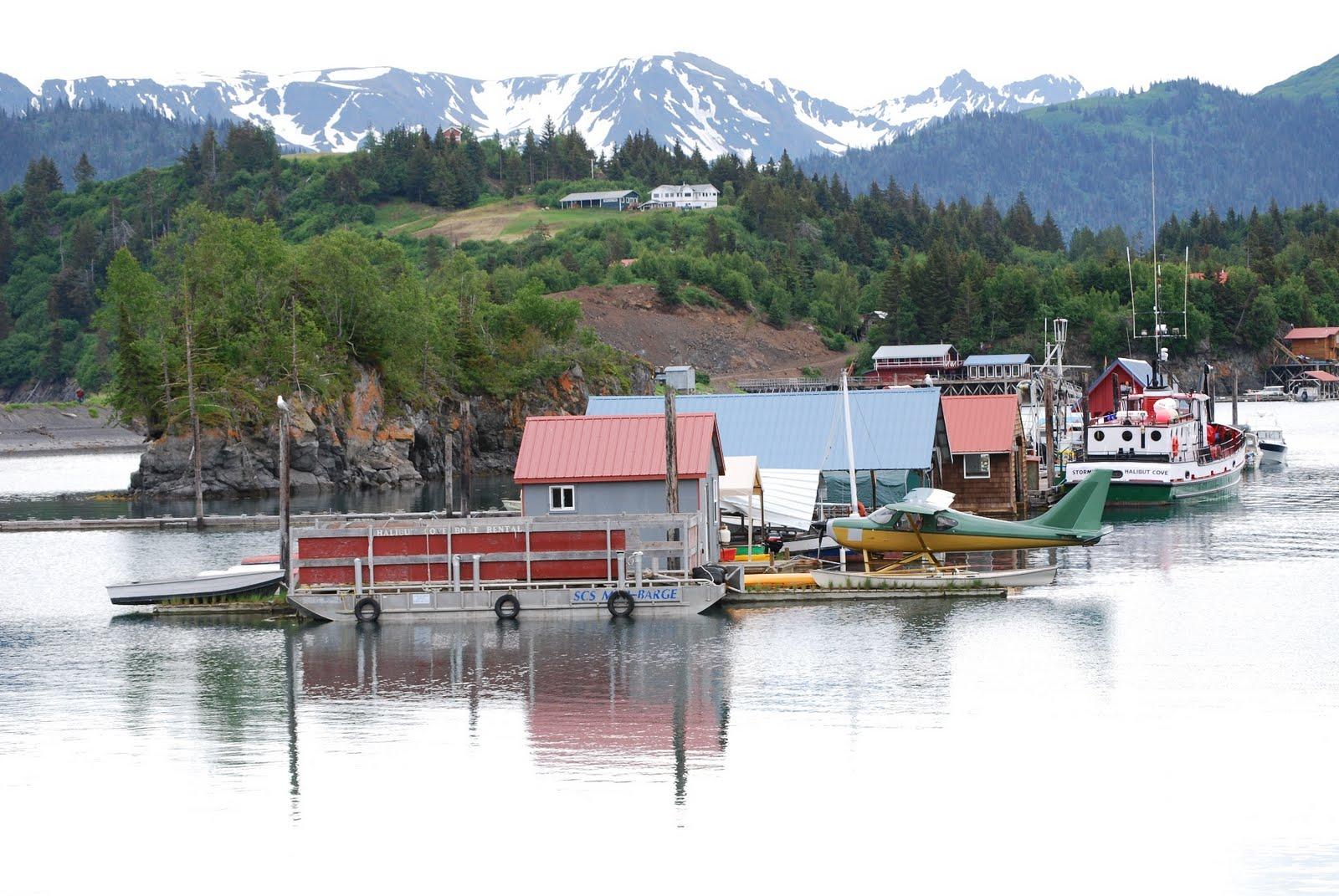 Travel Alaska  Halibut Cove Traveler and Vacation Information