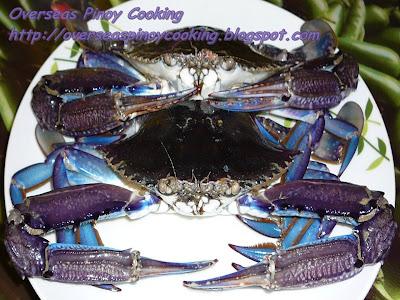 Halabos na Alimasag - Blue Crab