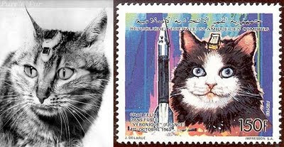 French Space Cats Felix and Felicette