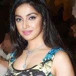 Divya Khosla Sexy Stills