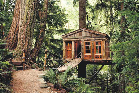 Beautiful Abodes The Treehouse That Your Dad Didn T Build