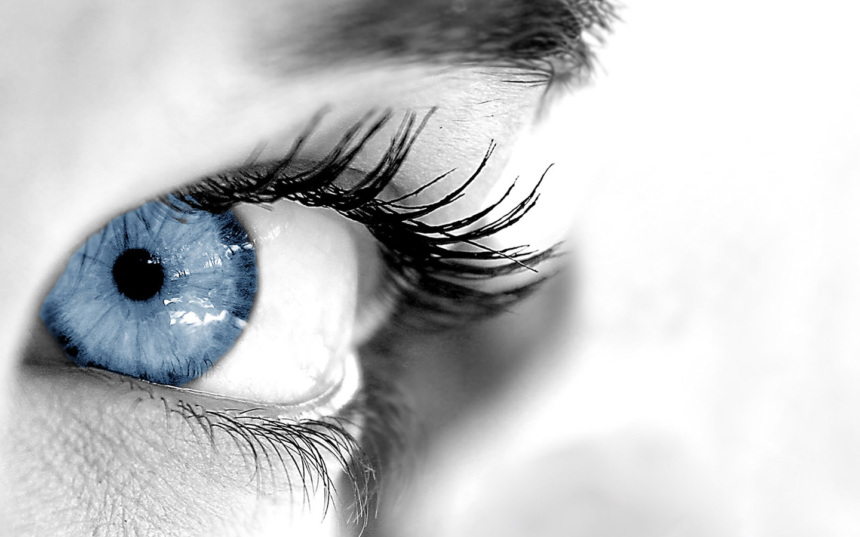 New Art Funny Wallpapers Jokes: Blue Eyes Photos HD 1440x900 Desktop Wallpapers