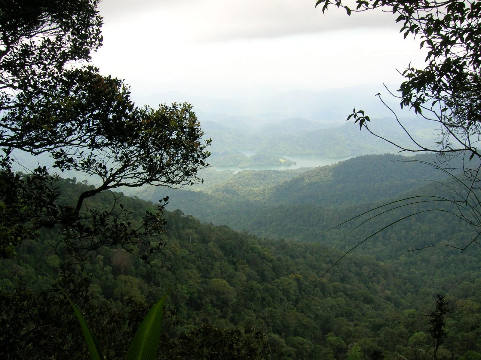 Mambang Diawan Climbing Of Gunung Nuang